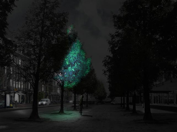Light_Emitting_Tree