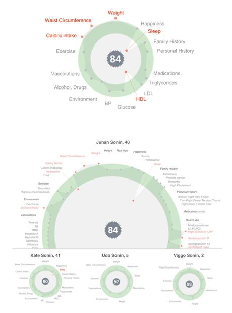 hGraph information visualization