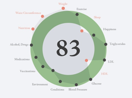 hGraph, your health in one picture