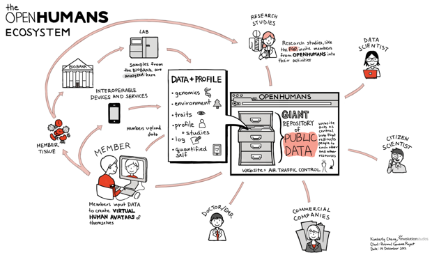 Involution Studios designers mapped the PGP organization and constituencies.