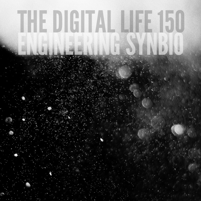 150_engineering_synbio.jpg