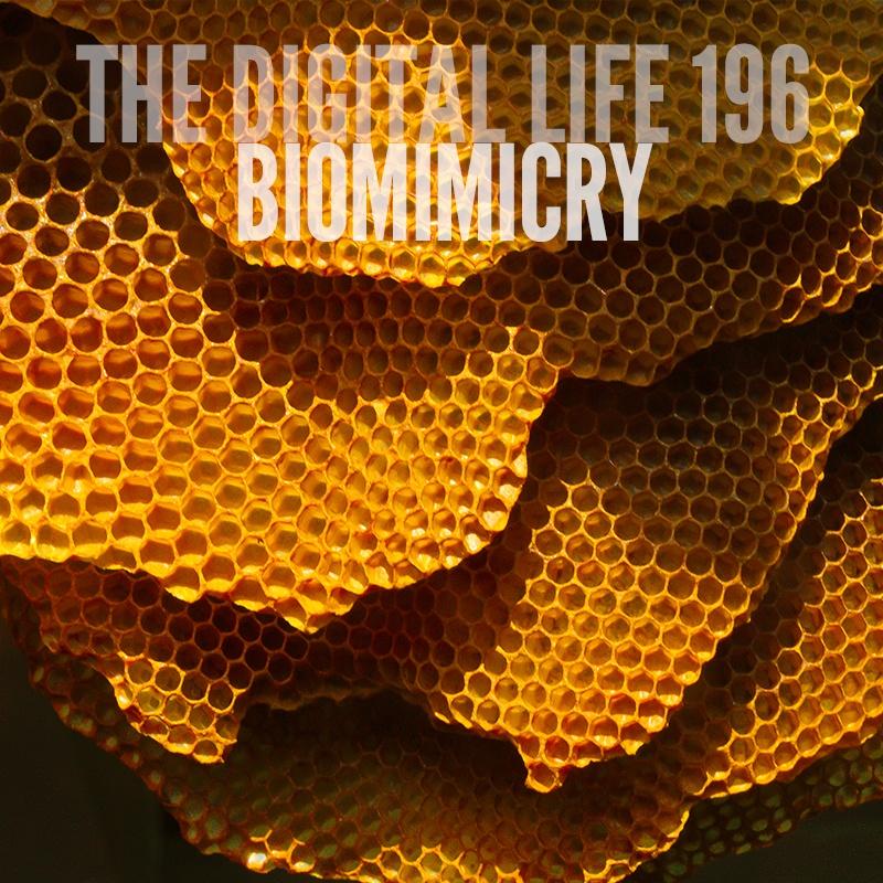 biommimicry2.jpg
